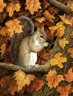 Autumn Grey Squirrel by Daphne Baxter 2-Sided Garden Flag