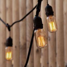 Lights.com | String Lights | Vintage String Lights | Williamsburg T14 ST18 Heavy Duty 10-Socket Vintage Stringer
