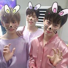 Minwoo Hyunseong and Donghyun Boyfriend Kpop, Kim Dong, Bts Korea, One Pic, Handsome, Guys, Instagram Posts, Anime, Babies