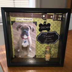 Dog memory shadow box for Roxie Dog Shadow Box, Dog Crafts, Animal Projects, Pet Loss, Frame Crafts, Pet Memorials, Dog Art, Dog Life, Pet Care