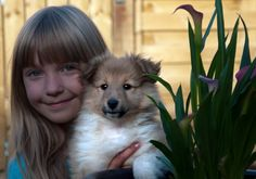 Girl with her Sheltie puppy