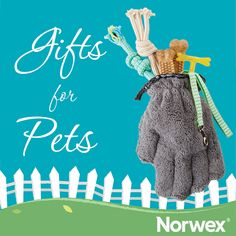 Holiday Gift Guide for Pets! Make this holiday extra special for your furry friend and thank them for being such cuddly companions with this sweet and easy treat: Fill a Pet Mitt with your pet's favorite treat and a toy! Shop these Norwex faves here: http://meganeckstine.norwex.biz/en_US/customer/shop/New_Products