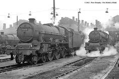 30/01/1964 - Willesden (1A) MPD, London. | Best viewed Origi… | Flickr Steam Trains Uk, Steam Railway, British Rail, Old Trains, Steam Engine, Steam Locomotive, Model Trains, West Virginia, Diesel