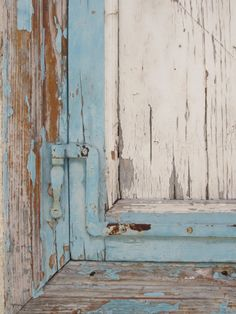 Beautiful Norwegian blue.                 Nana's favorite color was robin's egg blue.