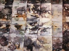 A series of posts about eco prints with rust on cotton rag paper and on fabrics. This group of prints on 140 lb. watercolour paper is shown assembled in accordion book form. Watercolour paper was c…