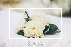Imagen Artefoto - Laura Pérez