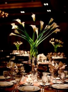 I LOVE calla lillies! Want them to be my wedding centerpiece!