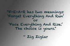 Fear quote Zig Ziglar #zigziglar #kurttasche #successwithkurt