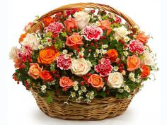Arrangement of 20 Mixed roses, Mixed carnation hiperico red gypsophila flower and green leaf in a basket Basket Flower Arrangements, Artificial Floral Arrangements, Beautiful Flower Arrangements, Summer Flowers, Silk Flowers, Beautiful Flowers, Gypsophila Flower, Corporate Flowers, Cemetery Flowers