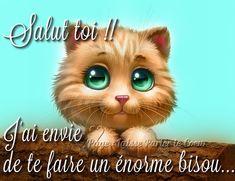 Salut toi !! J'ai envie de te faire un énorme bisou #bisous chat chaton mignon bisou