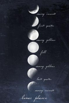 Lunar_20phases-prev_original