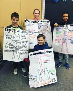 Human Body Systems Anchor Charts Two Teachers in Fifth Human Body Science, Human Body Activities, Human Body Unit, Human Body Systems, Science Lessons, Science Education, Science Fun, Health Education, Physical Education