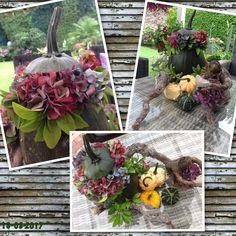 Gemaakt  kalebas met hortensia