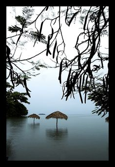 Ometepe Island, Lake Nicaragua, Nicaragua. Lake Nicaragua is a vast freshwater lake of tectonic origin. With an area of 5,135 miles, it is the largest lake in Central America.