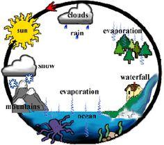 BIOLOGIA PARA CONCURSOS: Ciclo da Água   Biologia   Pinterest