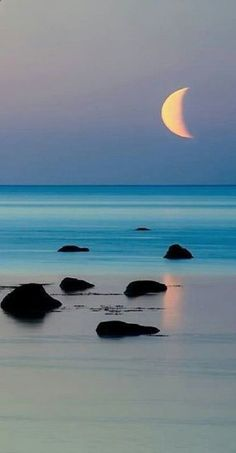 Ahh the serenity. so much serenity. Beautiful Moon, Beautiful Beaches, Beautiful World, Beautiful Scenery, Beautiful Things, Beautiful Nature Pictures, Beautiful Unicorn, Nature Images, Simply Beautiful