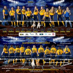 Bulldogs Banner Fastpitch Softball_Sports Banner_Softball Banner_Baseball Banner_Team Pictures_Softball Posters_Sports Posters_Softball Team Pictures_Macomb County Photographer_Sterling Heights Photographer_Two sided banner Softball Team Pictures, Cheer Pictures, Softball Stuff, Softball Mom, Sports Pictures, Banner Sample, Softball Uniforms, Baseball Banner, Baseball Tournament
