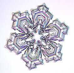"Snowflake Photographs - <a href=""http://SnowCrystals.com"" rel=""nofollow"" target=""_blank"">SnowCrystals.com</a> -  i0120b060A.jpg (1024×1010)"