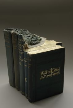 """WATER LANDS - carved book landscape by Guy Laramée - part of the """"The Great Wall"""" project."""