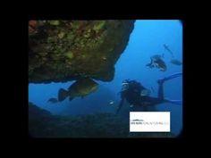 Salpatxot - Islas Medas