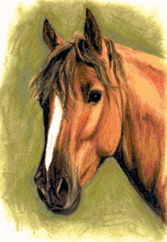 Horse. Free cross stitch pattern