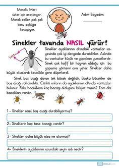 1. Sınıf Tatil Etkinlikleri -41 Sayfa- | Learn Turkish, Preschool, Drama, Activities, Education, Math, Comics, Learning, Children