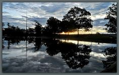 Lovely reflections