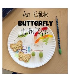 Preschool Kids Crafts Science Life Cycles – Creating an Edible Butterfly Life Cycle… - Preschool Children Activities Butterfly Food, Butterfly Life Cycle, Butterfly Project, Life Cycle Craft, Preschool Science, Life Science, Science Books, Science Ideas, Science Lessons