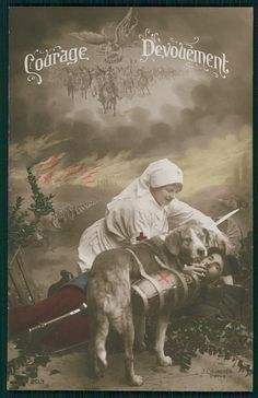 Red Cross nurse & Water carrier War dog original ww1 WWI old 1915 Photo postcard
