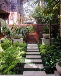 A well manicured side yard helps to frame your home and prefaces the interior and family inside, providing an initial welcome. A well thought out and organised side yard design and landscaping… Modern Front Yard, Front Yard Design, Small Gardens, Outdoor Gardens, Small Tropical Gardens, Courtyard Gardens, Design Jardin, Modern Garden Design, House Garden Design