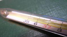 Comprueba Tu Tiroides: Todo Lo Que Necesitas Es Un Termómetro!