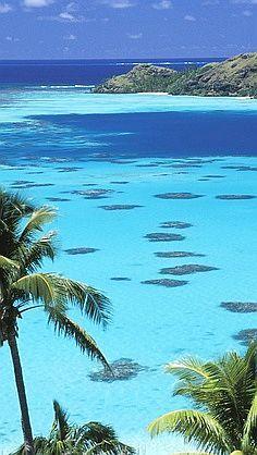 #Polynesian Islands- Here's to you Shonda Leigh