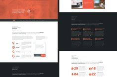 Argus WordPress Theme