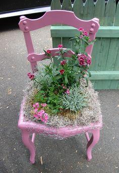 chaise et plantes