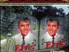 Elvis Presley Videos, Elvis Presley Photos, Elvis Presley Christmas, Loretta Lynn, American Legend, Gene Kelly, Star Pictures, Steve Mcqueen, Graceland
