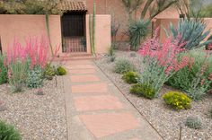 nice color pallet using repeating plants