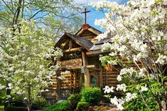 Springtime in the Canyon is unlike anywhere else! Catch the first blooms, waterfalls and wildlife as the weather gets warmer this season in Dogwood Canyon. Dogwood Canyon, How To Get Warm, Trout Fishing, Horseback Riding, All Over The World, Lodges, Spring Time, Great Places, Wildlife