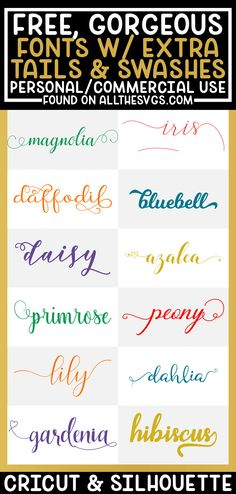 Free Svg Fonts, Free Fonts For Cricut, Free Calligraphy Fonts Download, Free Script Fonts Download, Cricut Help, Cursive Calligraphy, Cursive Script, Free Cursive Fonts, Pretty Cursive Fonts