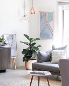 Living room inspiration | grey lounge, fiddle leaf, copper lighting