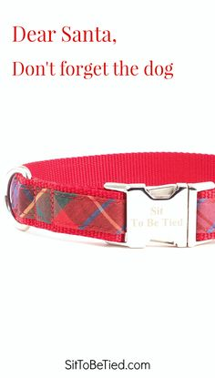 Holiday dog collar in bright jewel tones. Festive red plaid dog collar for Christmas.