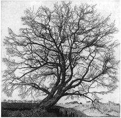 Federico Galli / 1932 - 2009 / İtalya #tree #art