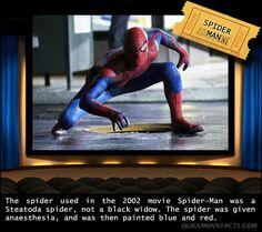 Amazing Movie Facts – 34 Pics