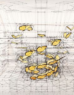 Rafael Araujo's technology-free mathematical brilliant drawing of how butterflies take flight.
