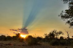 Sunset, Madikwe Game Reserve South africa www.genadphotography.com
