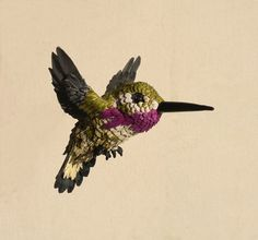 Hand made Paper and Epoxy Humming bird by NIHARIKAWILDLIFEART