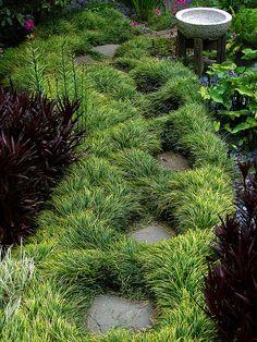 ⍋Green Gardens⍋ zen, formal, topiary & landscape parks & gardens - mondo grass pathway