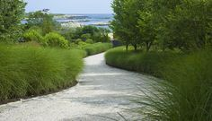 Walkway with Miscanthus edge - Design your own walkway or garden path. We show you how at http://gardendesignforliving.com/?page_id=74