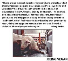 You can write it in caps all you want that you love all animals but that you must have your burger or whatever; you're not convincing anyone - not even yourself. You know you're a monster and yes, it does make you a bad person because you're knowingly paying for the needless suffering and deaths of innocents. But redemption is at hand: #GoVEGAN, forgive yourself, educate others. WE ARE ALL RUNNING OUT OF TIME