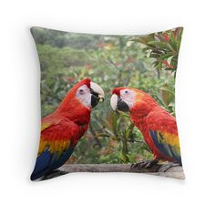 Two Birds Bird Decor Tropical Cushions by PeggyCollinsPhotoArt
