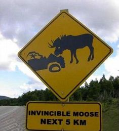 Invincible moose ... awesome sign :) #GILOVEALBERTA